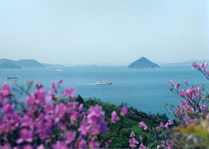 風景 つつじ(近) 大槌島
